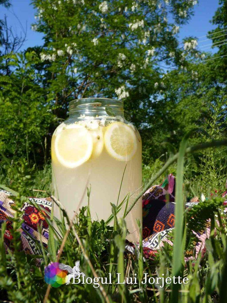 Salcamata suc din flori de salcam cu lamaie