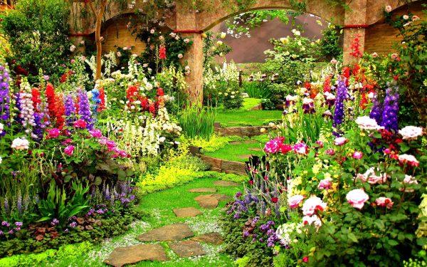 Gradina cu flori care se seamana toamna