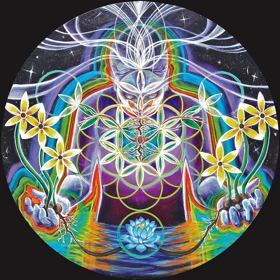 Floarea vietii simbol al creatiei