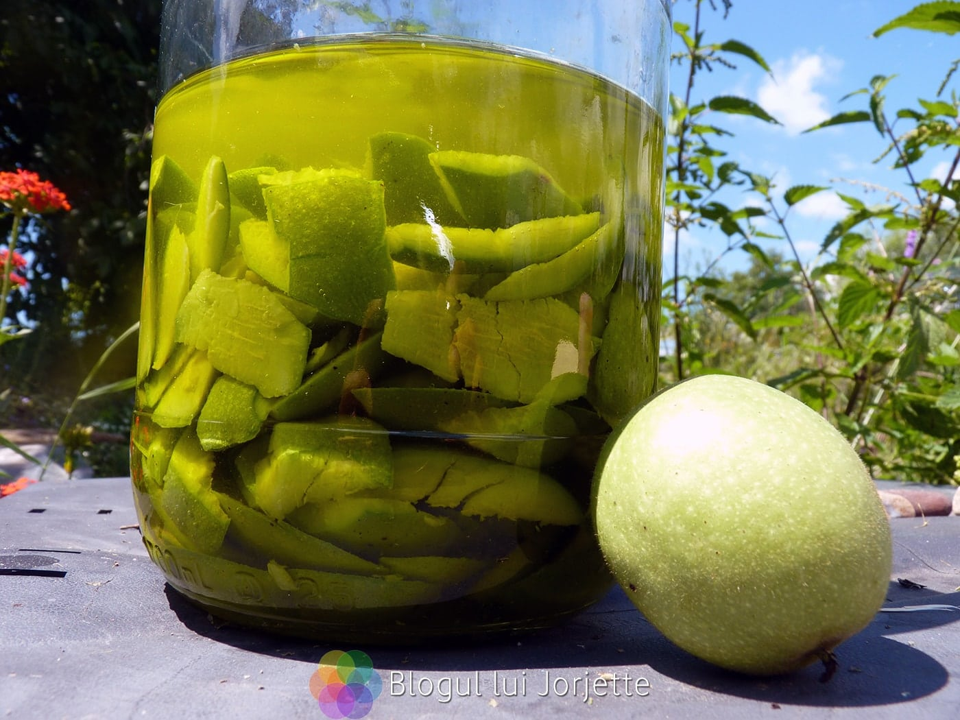 Imaginea thumbnail despre Retete cu nuci verzi, frunze de nuc, coji şi miez – Lichior de nuci verzi