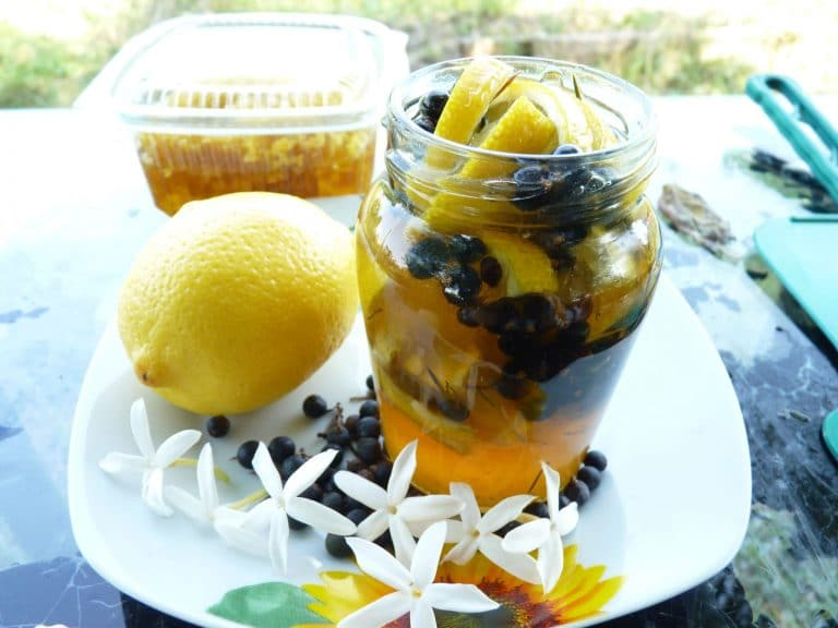 miere de ienupar cu lamaie- ienuparul macerat in miere