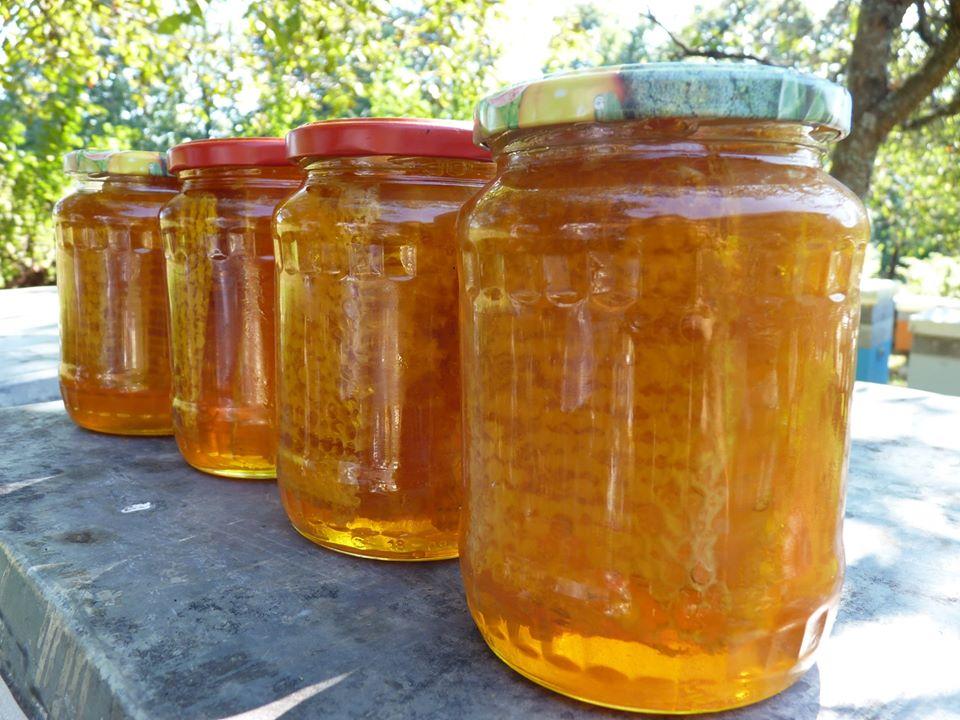 Fagure cu miere de albine