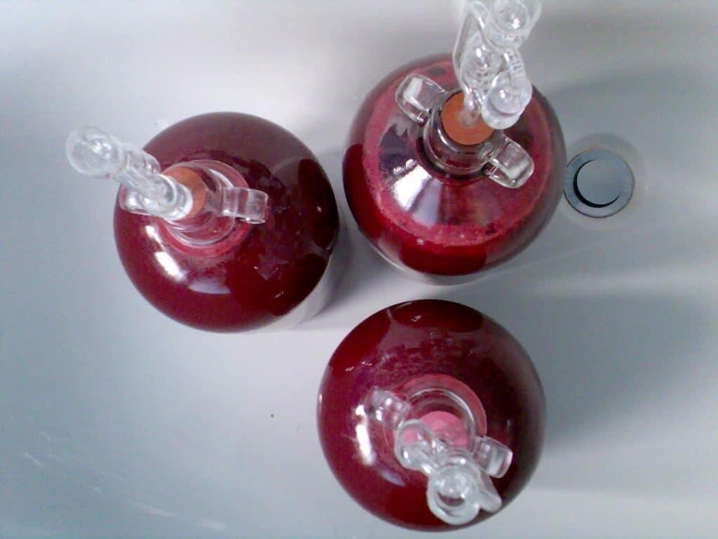 Prepararea vinului de rubarba reteta vin de rubarba
