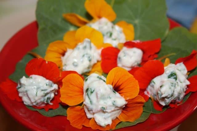 Flori de condurasi cu crema de branza si spanac