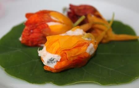 Flori de condurasi umplute cu crema de branza cu ierburi
