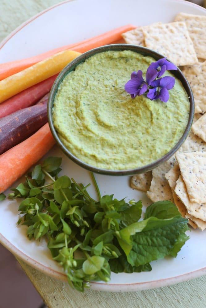 Hummus de naut cu toporasi si rocoina