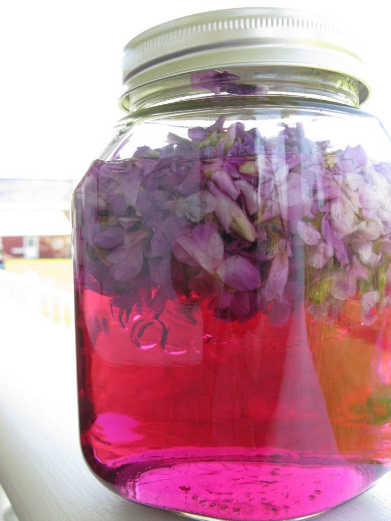 Otet de toporasi flori infuzate in otet de mere