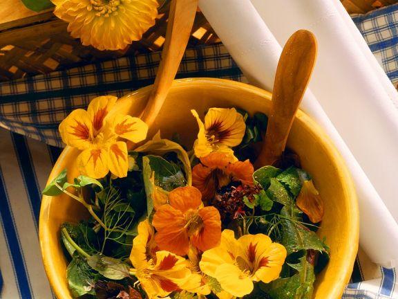 Salata cu flori de condurul doamnei