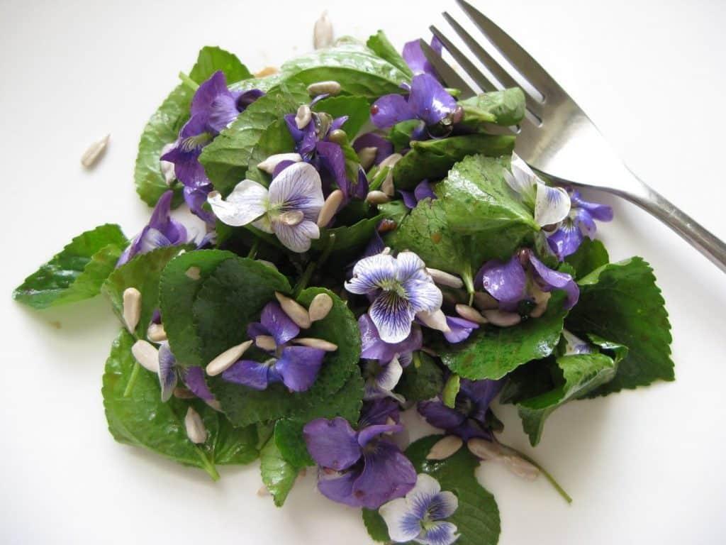 Salata cu frunze si flori de toporasi si seminte de floarea soarelui