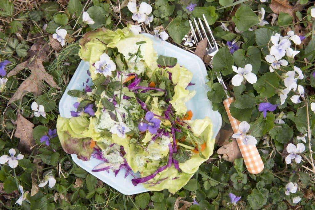 Salata de primavara cu toporasi si sos de smantana si usturoi