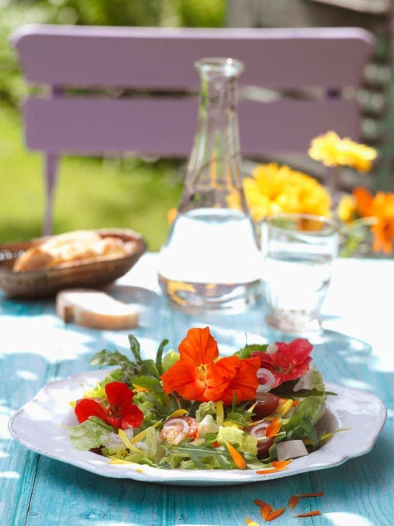Salata de vara cu condurasi si rucola 1