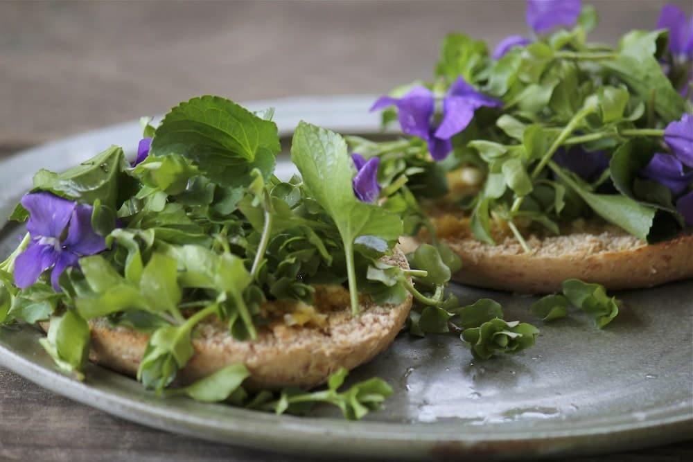 Sandviciuri cu frunze si flori de tporasi si racovina cu sos de usturoi